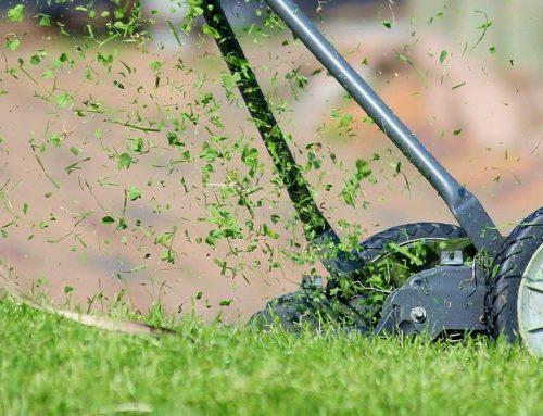 Unkraut in Fugen mit dem Rasentrimmer entfernen