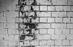 Mauertrockenlegung und Schimmelbildung